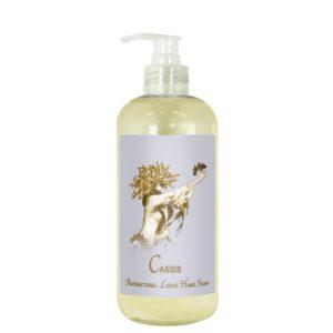 Cassis Antibacterial Liquid Hand Soap (19oz)